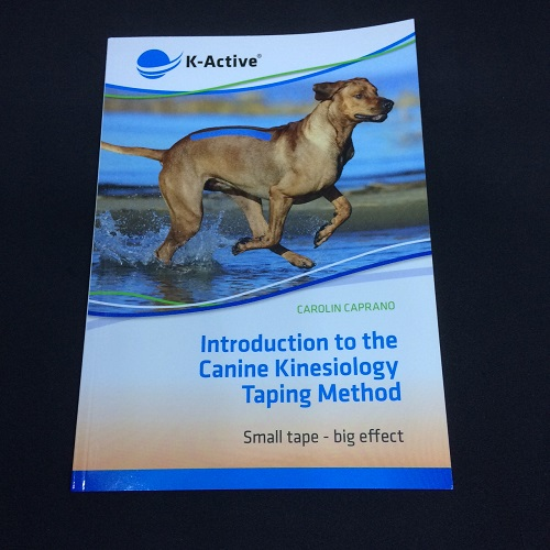 Kinesiology Taping Book